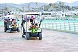 50k visit Taif park on opening day