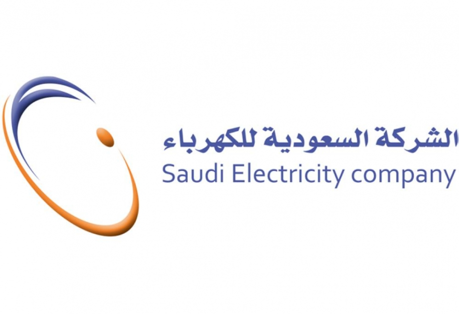 Image result for Saudi electric company